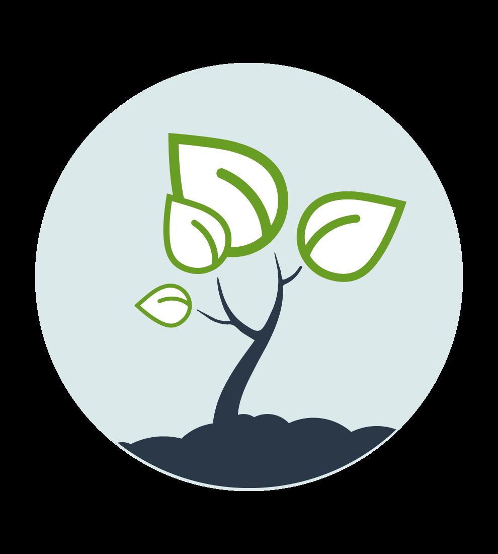 Illustration på en spirande växt med två lövpar. Ljusblå, rund basplatta med mörkblå siluett av jord i botten.